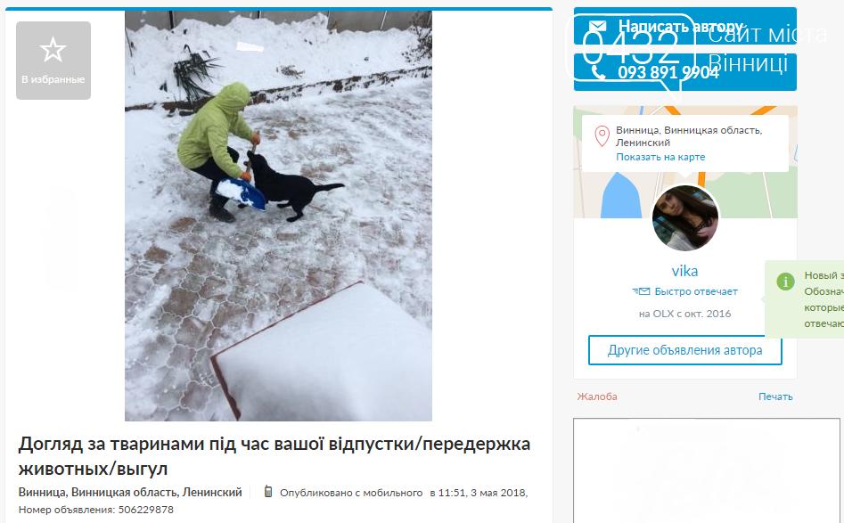 Когда хозяину некогда: специалисты по выгулу собак в Виннице, фото-2