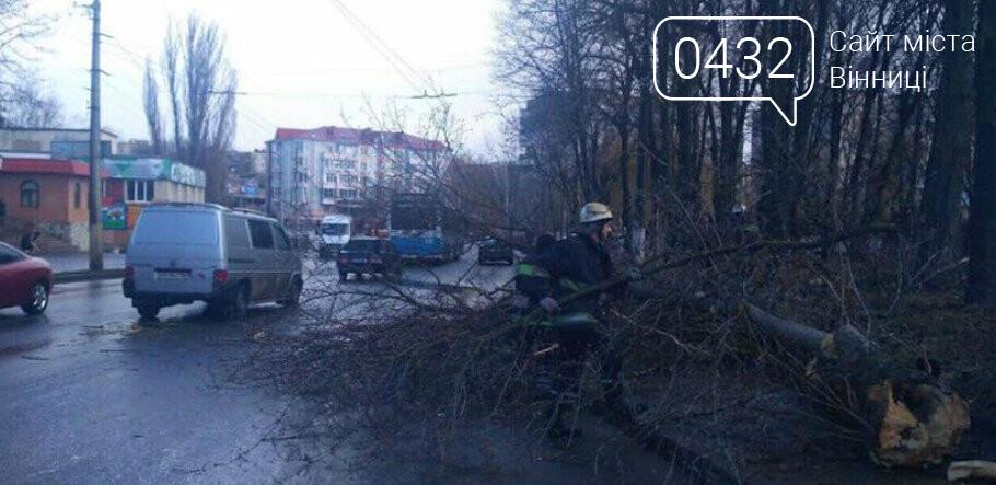 Трагедия в Виннице: дерево упало на 12-летнюю девочку (фото), фото-1