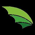 Drakonov Pro - веб студия, создание сайтов, интернет-магазинов, ведение социальных сетей Винница