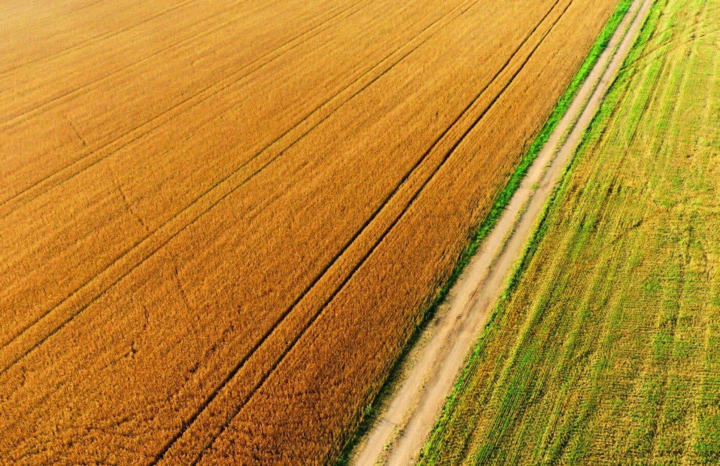 Прозорий земельний ринок проти корупції: як розвиватимуться села Вінниччини після скасування мораторію, фото-1