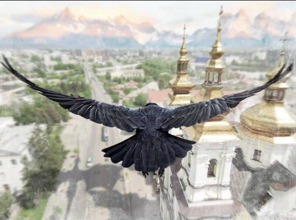 Сюрреалістичні фотороботи Вінниці від Степана Новицького, фото-8