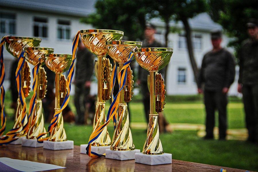 На Вінниччині пройшли змагання кінологів, фото-2
